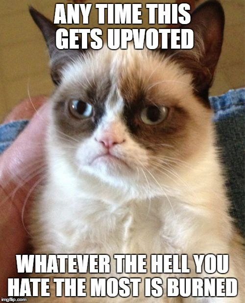 Grumpy Cat Meme | ANY TIME THIS GETS UPVOTED WHATEVER THE HELL YOU HATE THE MOST IS BURNED | image tagged in memes,grumpy cat | made w/ Imgflip meme maker