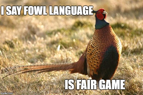 I SAY FOWL LANGUAGE IS FAIR GAME | made w/ Imgflip meme maker