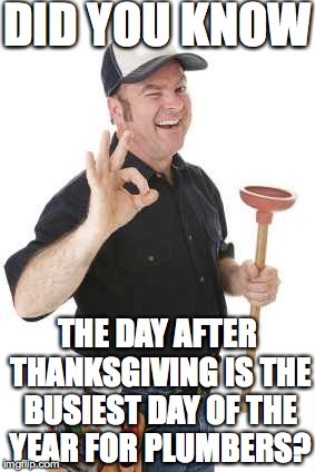 plumber |  DID YOU KNOW; THE DAY AFTER THANKSGIVING IS THE BUSIEST DAY OF THE YEAR FOR PLUMBERS? | image tagged in plumber | made w/ Imgflip meme maker