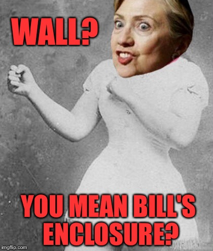 WALL? YOU MEAN BILL'S ENCLOSURE? | made w/ Imgflip meme maker