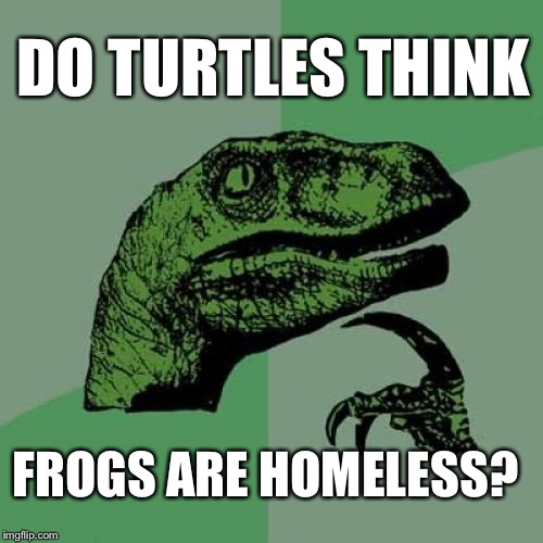 Think About IIIT...Think About IIIT...Bingo: | DO TURTLES THINK FROGS ARE HOMELESS? | image tagged in memes,philosoraptor | made w/ Imgflip meme maker