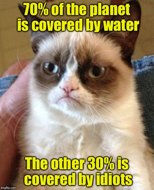 Grumpy Cat Meme | 70% of the planet is covered by water The other 30% is covered by idiots | image tagged in memes,grumpy cat | made w/ Imgflip meme maker
