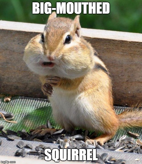 Names for things #2 |  BIG-MOUTHED; SQUIRREL | image tagged in memes,chipmunk,funny,big-mouthed squirrel,social expectations squirrel,names for things | made w/ Imgflip meme maker