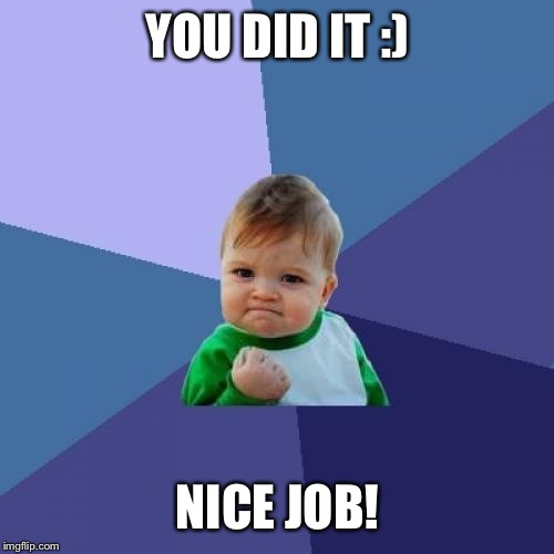 Success Kid Meme | YOU DID IT :) NICE JOB! | image tagged in memes,success kid | made w/ Imgflip meme maker