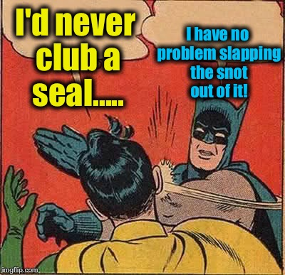Batman Slapping Robin Meme | I'd never club a seal..... I have no problem slapping the snot out of it! | image tagged in memes,batman slapping robin | made w/ Imgflip meme maker