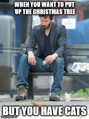 Sad Keanu |  WHEN YOU WANT TO PUT UP THE CHRISTMAS TREE; BUT YOU HAVE CATS | image tagged in sad keanu | made w/ Imgflip meme maker