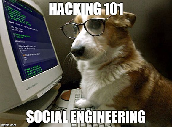 Corgi Hacking 101 | HACKING 101 SOCIAL ENGINEERING | image tagged in corgi hacker | made w/ Imgflip meme maker