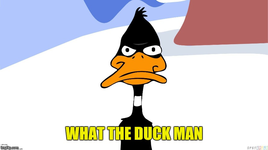 WHAT THE DUCK MAN | made w/ Imgflip meme maker