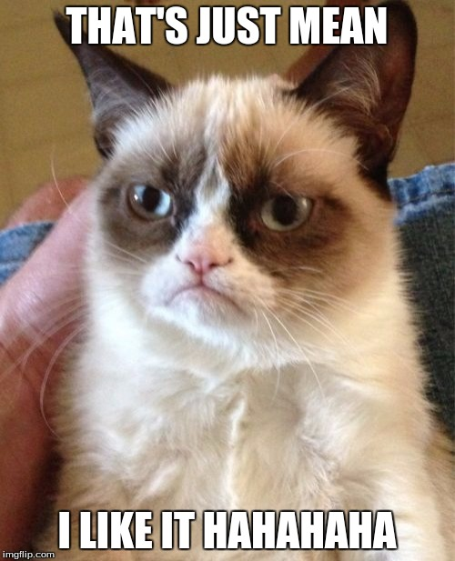 Grumpy Cat Meme | THAT'S JUST MEAN I LIKE IT HAHAHAHA | image tagged in memes,grumpy cat | made w/ Imgflip meme maker