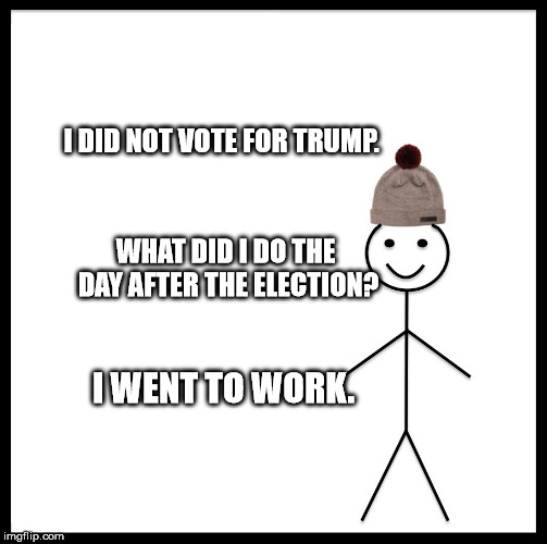 Be Like Bill Meme | I DID NOT VOTE FOR TRUMP. WHAT DID I DO THE DAY AFTER THE ELECTION? I WENT TO WORK. | image tagged in memes,be like bill | made w/ Imgflip meme maker