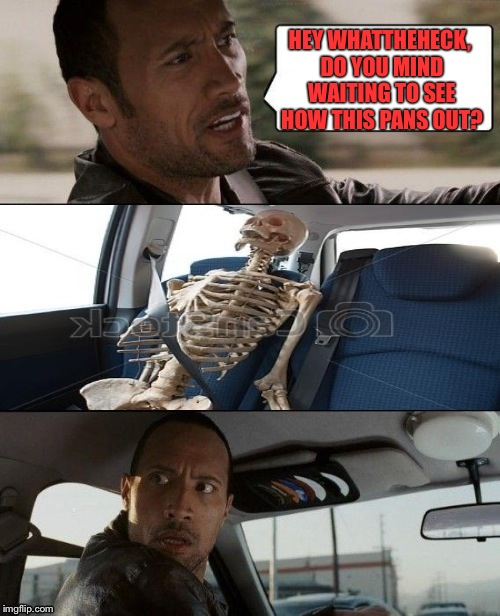 Rock driving skeleton | HEY WHATTHEHECK, DO YOU MIND WAITING TO SEE HOW THIS PANS OUT? | image tagged in rock driving skeleton | made w/ Imgflip meme maker