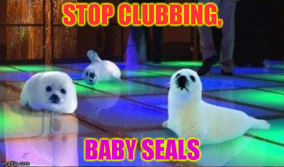 STOP CLUBBING, BABY SEALS | made w/ Imgflip meme maker