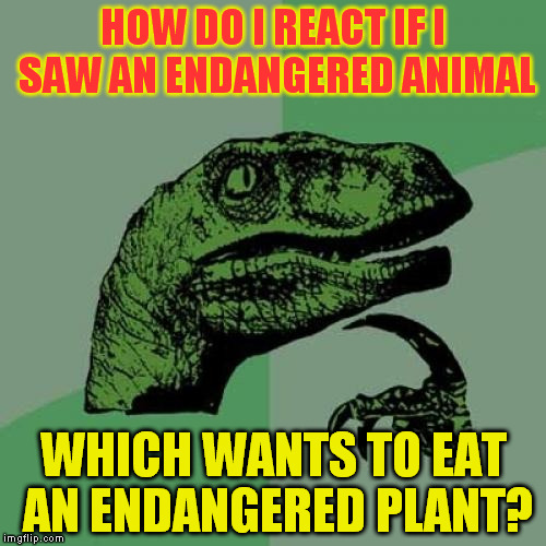 Philosoraptor Meme | HOW DO I REACT IF I SAW AN ENDANGERED ANIMAL WHICH WANTS TO EAT AN ENDANGERED PLANT? | image tagged in memes,philosoraptor | made w/ Imgflip meme maker