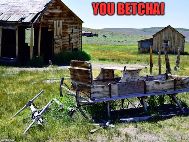 YOU BETCHA! | made w/ Imgflip meme maker