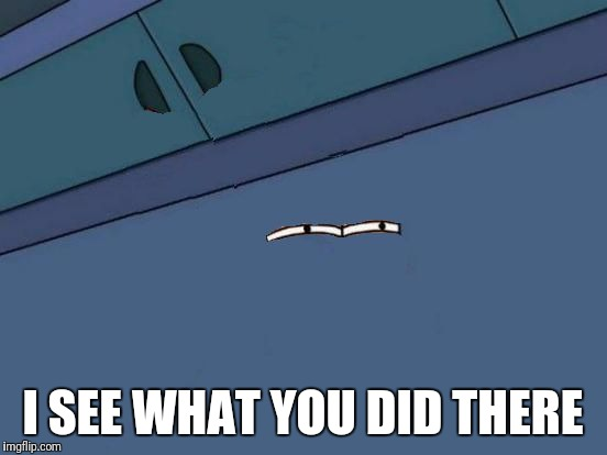 Futurama Fry Eyes | I SEE WHAT YOU DID THERE | image tagged in futurama fry eyes | made w/ Imgflip meme maker