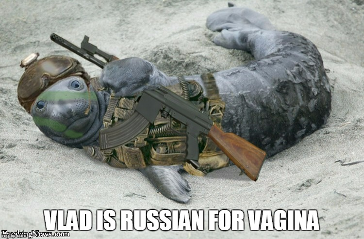 VLAD IS RUSSIAN FOR VA**NA | made w/ Imgflip meme maker