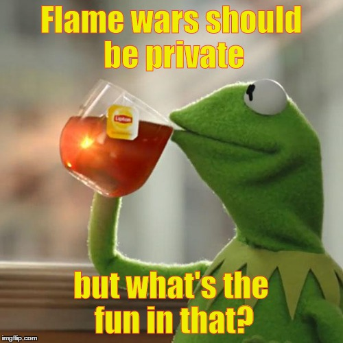 But Thats None Of My Business Meme | Flame wars should be private but what's the fun in that? | image tagged in memes,but thats none of my business,kermit the frog | made w/ Imgflip meme maker