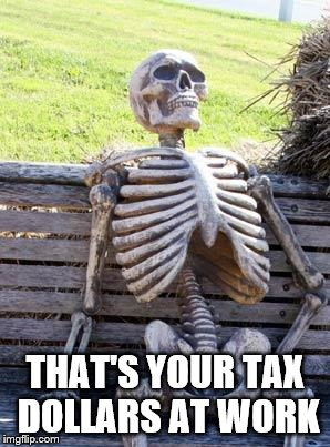 Waiting Skeleton Meme | THAT'S YOUR TAX DOLLARS AT WORK | image tagged in memes,waiting skeleton | made w/ Imgflip meme maker