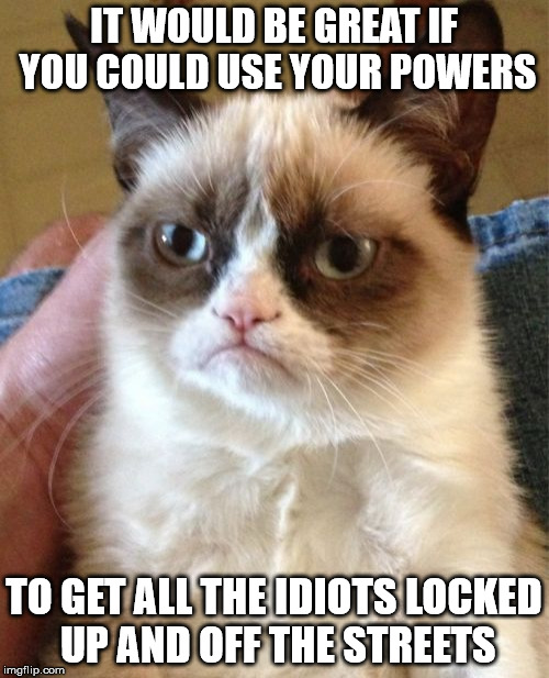 Grumpy Cat Meme | IT WOULD BE GREAT IF YOU COULD USE YOUR POWERS TO GET ALL THE IDIOTS LOCKED UP AND OFF THE STREETS | image tagged in memes,grumpy cat | made w/ Imgflip meme maker