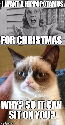 Image tagged in gayla peevey,grumpy cat,christmas,music