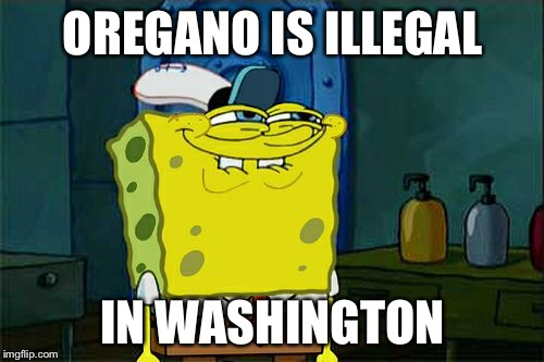 Dont You Squidward Meme | OREGANO IS ILLEGAL IN WASHINGTON | image tagged in memes,dont you squidward | made w/ Imgflip meme maker