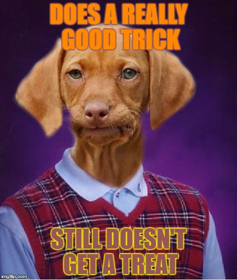 Bad Luck Raydog | DOES A REALLY GOOD TRICK STILL DOESN'T GET A TREAT | image tagged in bad luck raydog | made w/ Imgflip meme maker