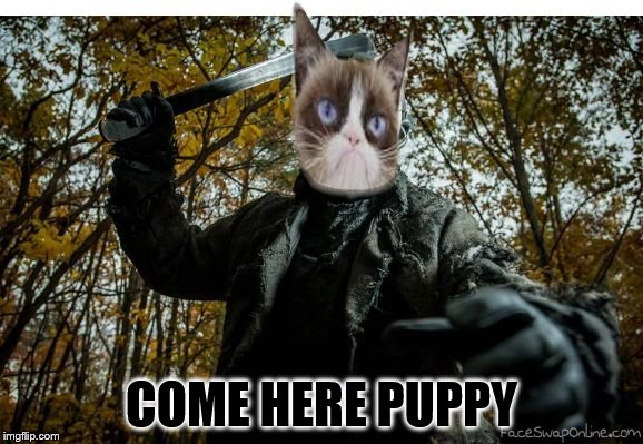 grumpy cat jason | COME HERE PUPPY | image tagged in grumpy cat jason | made w/ Imgflip meme maker