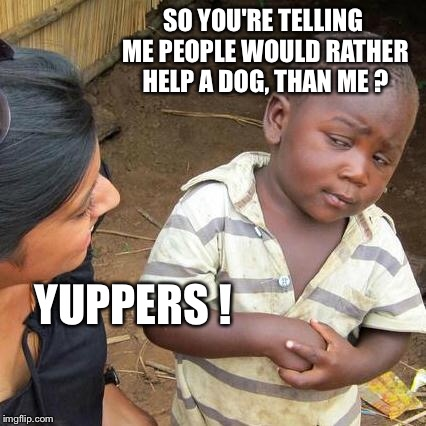 Third World Skeptical Kid Meme | SO YOU'RE TELLING ME PEOPLE WOULD RATHER HELP A DOG, THAN ME ? YUPPERS ! | image tagged in memes,third world skeptical kid | made w/ Imgflip meme maker