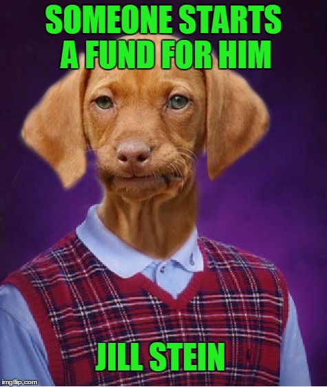 SOMEONE STARTS A FUND FOR HIM JILL STEIN | made w/ Imgflip meme maker
