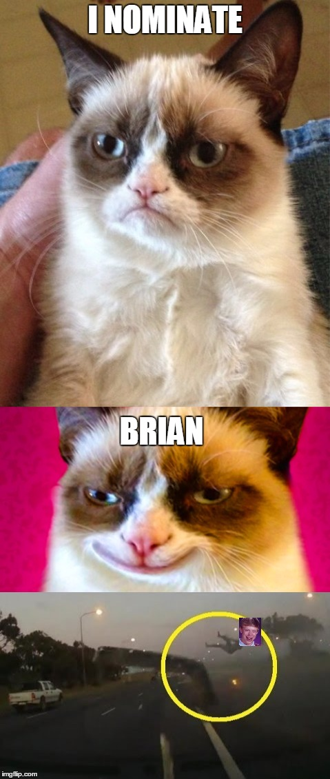 I NOMINATE BRIAN | made w/ Imgflip meme maker