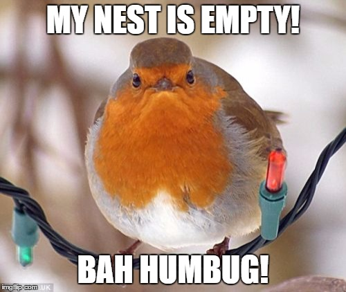 Bah Humbug Meme | MY NEST IS EMPTY! BAH HUMBUG! | image tagged in memes,bah humbug | made w/ Imgflip meme maker