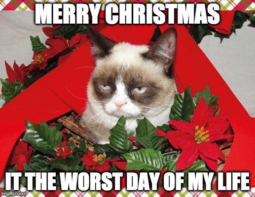 Grumpy Cat Mistletoe | MERRY CHRISTMAS IT THE WORST DAY OF MY LIFE | image tagged in memes,grumpy cat mistletoe,grumpy cat | made w/ Imgflip meme maker