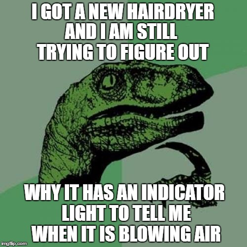 Seriously, What Went On In The Boardroom That Day? | I GOT A NEW HAIRDRYER WHY IT HAS AN INDICATOR LIGHT TO TELL ME WHEN IT IS BLOWING AIR AND I AM STILL TRYING TO FIGURE OUT | image tagged in philosoraptor | made w/ Imgflip meme maker
