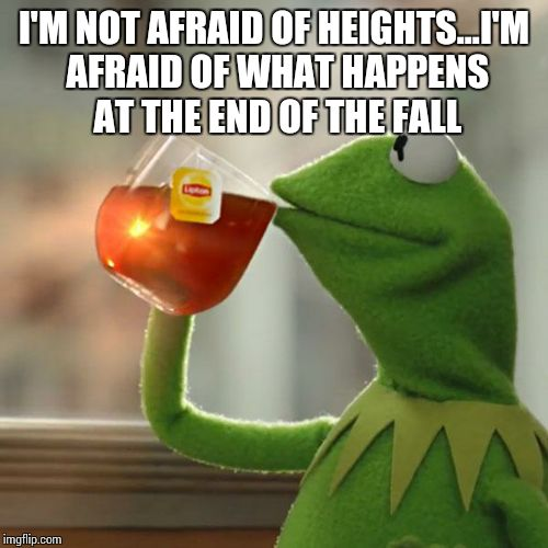 But Thats None Of My Business Meme | I'M NOT AFRAID OF HEIGHTS...I'M AFRAID OF WHAT HAPPENS AT THE END OF THE FALL | image tagged in memes,but thats none of my business,kermit the frog | made w/ Imgflip meme maker
