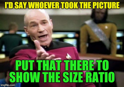 Picard Wtf Meme | I'D SAY WHOEVER TOOK THE PICTURE PUT THAT THERE TO SHOW THE SIZE RATIO | image tagged in memes,picard wtf | made w/ Imgflip meme maker