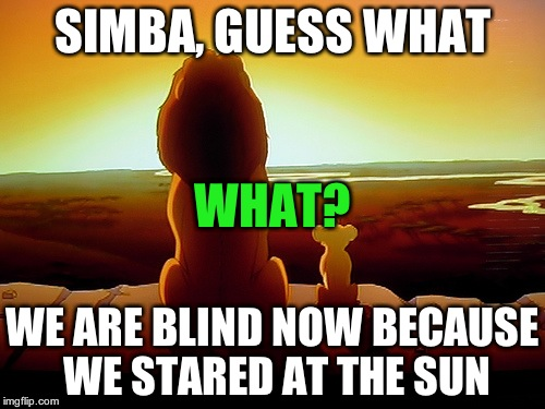 Lion King | SIMBA, GUESS WHAT WE ARE BLIND NOW BECAUSE WE STARED AT THE SUN WHAT? | image tagged in memes,lion king | made w/ Imgflip meme maker