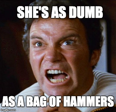 SHE'S AS DUMB AS A BAG OF HAMMERS | made w/ Imgflip meme maker