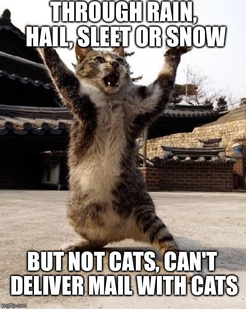 THROUGH RAIN, HAIL, SLEET OR SNOW BUT NOT CATS, CAN'T DELIVER MAIL WITH CATS | made w/ Imgflip meme maker