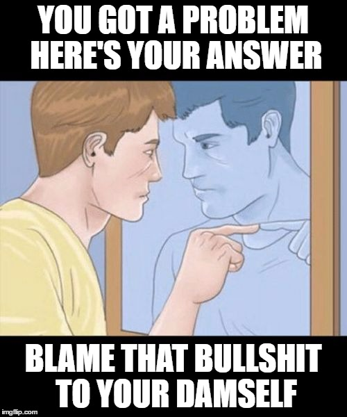 check yourself depressed guy pointing at himself mirror | YOU GOT A PROBLEM HERE'S YOUR ANSWER BLAME THAT BULLSHIT TO YOUR DAMSELF | image tagged in check yourself depressed guy pointing at himself mirror | made w/ Imgflip meme maker
