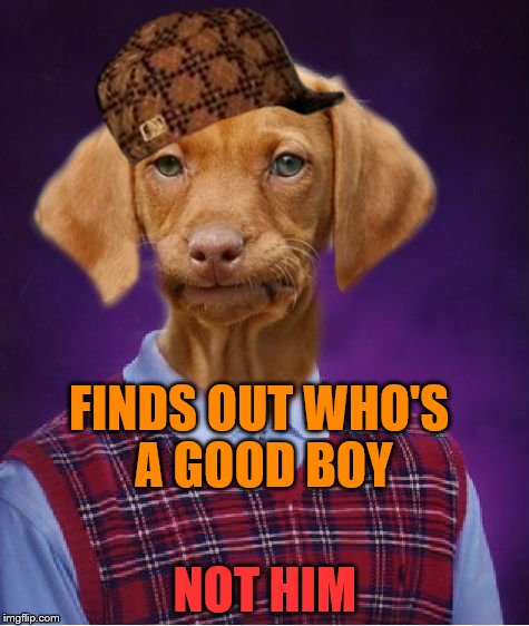 Bad Luck Raydog | FINDS OUT WHO'S A GOOD BOY NOT HIM | image tagged in bad luck raydog,scumbag | made w/ Imgflip meme maker