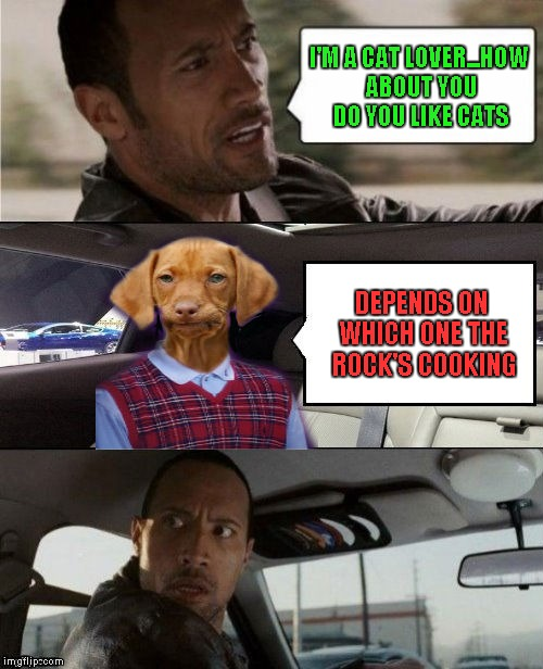 Can you smell what the Rock is cooking? | I'M A CAT LOVER...HOW ABOUT YOU DO YOU LIKE CATS DEPENDS ON WHICH ONE THE ROCK'S COOKING | image tagged in rock driving bad luck raydog,memes,bad luck raydog,the rock driving blank,funny,cats | made w/ Imgflip meme maker