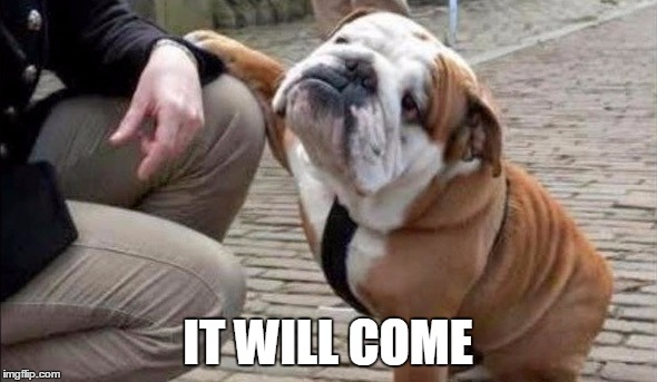 There There Dog | IT WILL COME | image tagged in there there dog | made w/ Imgflip meme maker