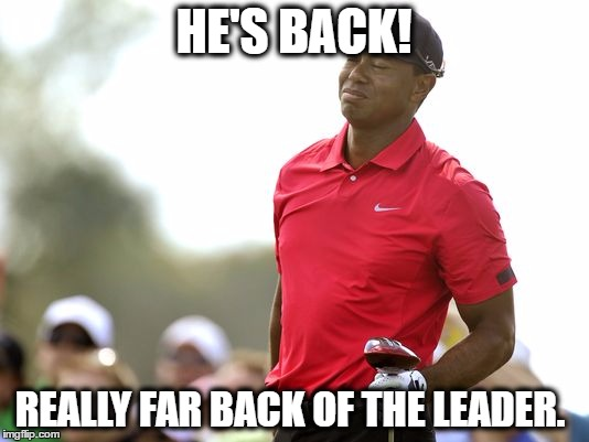 tiger's back | HE'S BACK! REALLY FAR BACK OF THE LEADER. | image tagged in tiger woods,golf,pga,pga tour,he's back,tiger | made w/ Imgflip meme maker