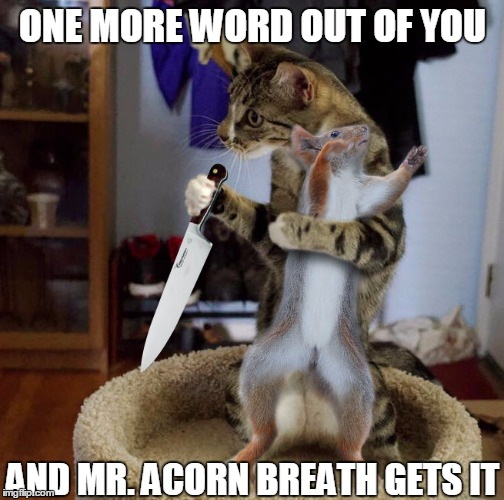 ONE MORE WORD OUT OF YOU AND MR. ACORN BREATH GETS IT | made w/ Imgflip meme maker