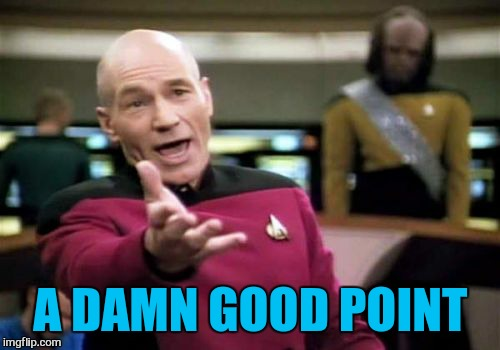 Picard Wtf Meme | A DAMN GOOD POINT | image tagged in memes,picard wtf | made w/ Imgflip meme maker