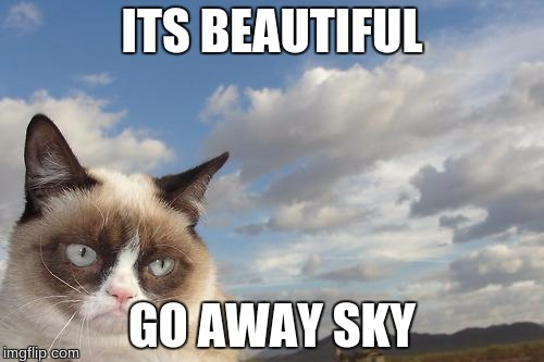 Grumpy Cat Sky | ITS BEAUTIFUL GO AWAY SKY | image tagged in memes,grumpy cat sky,grumpy cat | made w/ Imgflip meme maker