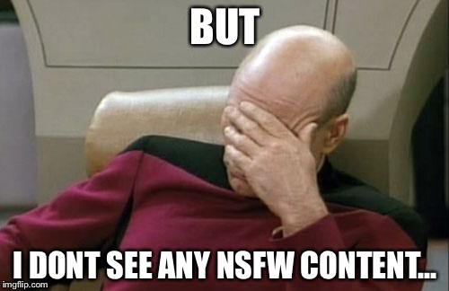 Captain Picard Facepalm Meme | BUT I DONT SEE ANY NSFW CONTENT... | image tagged in memes,captain picard facepalm | made w/ Imgflip meme maker