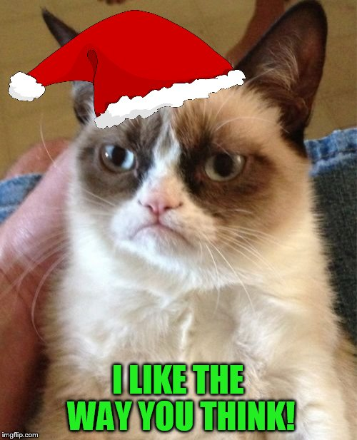Grumpy Cat Meme | I LIKE THE WAY YOU THINK! | image tagged in memes,grumpy cat | made w/ Imgflip meme maker