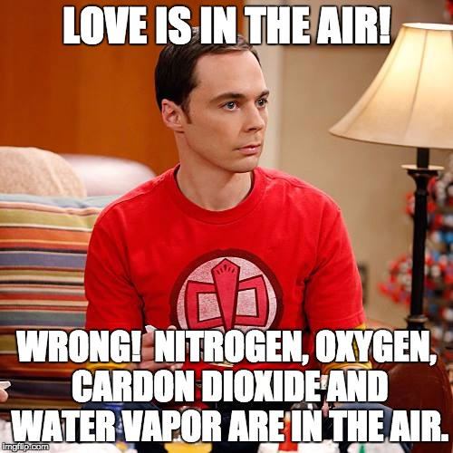Sheldon Cooper | LOVE IS IN THE AIR! WRONG!  NITROGEN, OXYGEN, CARDON DIOXIDE AND WATER VAPOR ARE IN THE AIR. | image tagged in sheldon cooper | made w/ Imgflip meme maker