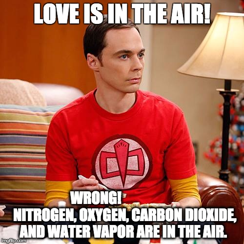 Sheldon Cooper |  LOVE IS IN THE AIR! WRONG!                     NITROGEN, OXYGEN, CARBON DIOXIDE, AND WATER VAPOR ARE IN THE AIR. | image tagged in sheldon cooper | made w/ Imgflip meme maker